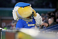 AFC Wimbledon mascot during the EFL Sky Bet League 1 match between AFC Wimbledon and Plymouth Argyle at the Cherry Red Records Stadium, Kingston, England on 26 December 2018.