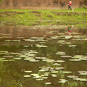 Tourist walking along of lake at Angkor Wat