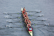 Crew: 322  Oxford Brookes University BC B<br /> <br /> Head of the River Race (HoRR) 2019<br /> <br /> To purchase this photo, or to see pricing information for Prints and Downloads, click the blue 'Add to Cart' button at the top-right of the page.