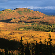 Denali National Park, Alaska, during fall.