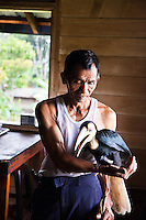 Bario Longhouse resident with a still young hornbill he has hand reared from a baby.