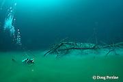 scuba diver swims through boundary zone of foggy hydrogen sulfide river that blankets the halocline at 30m depth in  Cenote Angelita, near Tulum, Yucatan Peninsula, Mexico