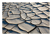 Mud cracks in sun baked playa formed when flash flooding sweeps across the desert after a storm