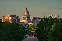 Washington Avenue, Downtown Madison