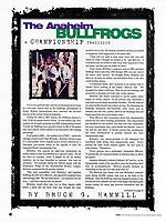 1999 RHI Anaheim Bullfrogs program.  Article by Bruce Hammill on the Anaheim Bullfrogs Championships.