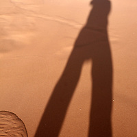 Africa, Namibia, Sossusvlei. The long shadow spills down from the crest of a sand dune at Sossusvlei.