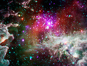 The star cluster NGC 281 is located about 6,500 light years from Earth and, remarkably, almost 1,000 light years above the plane of the galaxy. Spitzer and Chandra.