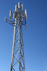 20 October 2007: Black birds swirl around a cellular tower.