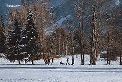 THEMENBILD - ein Paar mit einem Kind in einem Schlitten beim spazieren gehen am Winterwanderweg, aufgenommen am 10. Januar 2021 in Zell am See, Oesterreich // a couple with a child in a sledge walking along a winter hiking trail in Zell am See, Austria on 2021/01/10. EXPA Pictures © 2021, PhotoCredit: EXPA/ JFK