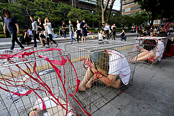 June 24, 2017 - Seoul, South Korea - Animal rights group activists are performing a memorial service to console the animals killed by the slaughter on the Gwanghwamun street. (Credit Image: © Min Won-Ki via ZUMA Wire)