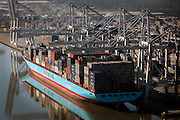 Container ships that visit the Port of Savannah in Savannah, Ga. (Photo by Stephen B. Morton)