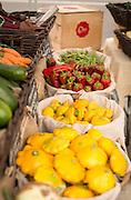 Fresh, local, organic produce at the Wilsonville, Oregon Farmers Market.