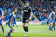 Wimbledon midfielder Anthony Wordsworth (40)  during the EFL Sky Bet League 1 match between Shrewsbury Town and AFC Wimbledon at Greenhous Meadow, Shrewsbury, England on 2 March 2019.