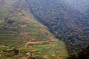 The border of the Bwindi Impenetrable Forest and national park and with farmland in Uganda.