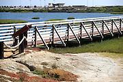 Bolsa Chica Ecological Reserve Huntington Beach
