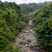 The Phrom River flows through natural forest within the Phu Khieo wildlife sanctuary in Chaiyaphum, Northeast Thailand