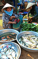Fish Vendor at Duong Dong Market, Phu Quoc. Though mostly a sleepy fishing village devoted to Nuoc Mam or fish sauce, in recent years Duong Dong and Phu Quoc have become popular thanks to the islands excellent white sand beaches.