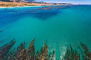 San Simeon Cove, Hearst San Simeon State Park, California USA