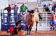 NOV 18, 2001, GILBERT, AZ, USA: A competitor is thrown from his bronc during the bareback riding at the Gilbert Days Rodeo in Gilbert, AZ, Sunday, Nov. 21, 2001. .PHOTO BY JACK KURTZ