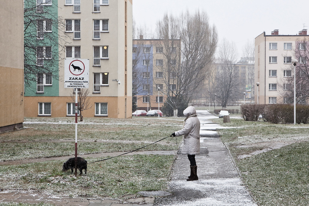 A woman walks her dogs during a snow storm among student housing blocks in Sosnowiec, Poland.