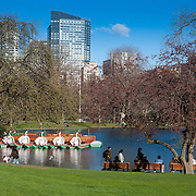 Boston skyline in spring with Public Garden lagoon and people walking in the park in sunny day