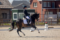 Hermans Angelina, BEL, Macho<br /> CDI3* Opglabbeek<br /> © Hippo Foto - Sharon Vandeput<br /> 23/04/21