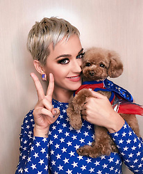 """Katy Perry releases a photo on Instagram with the following caption: """"did it for the sticker...amongst other things... #IVOTED\ud83c\uddfa\ud83c\uddf8 \ud83d\udcf8 @manthony783"""". Photo Credit: Instagram *** No USA Distribution *** For Editorial Use Only *** Not to be Published in Books or Photo Books ***  Please note: Fees charged by the agency are for the agency's services only, and do not, nor are they intended to, convey to the user any ownership of Copyright or License in the material. The agency does not claim any ownership including but not limited to Copyright or License in the attached material. By publishing this material you expressly agree to indemnify and to hold the agency and its directors, shareholders and employees harmless from any loss, claims, damages, demands, expenses (including legal fees), or any causes of action or allegation against the agency arising out of or connected in any way with publication of the material."""