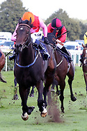 BREATHTAKING LOOK (2) ridden by Jim Crowley and trained by Stuart Williams winning The Group 3 Japan Racing Association Sceptre Stakes over 7f (£60,000)  during the third day of the St Leger Festival at Doncaster Racecourse, Doncaster, United Kingdom on 13 September 2019.