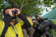 Wildlife watchers, The Central Apennines rewilding area, Italy, in and around the Abruzzo, Lazio e Molise National Park.