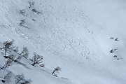Snow falls down the mountainside in Huerquehue National Park, Chile