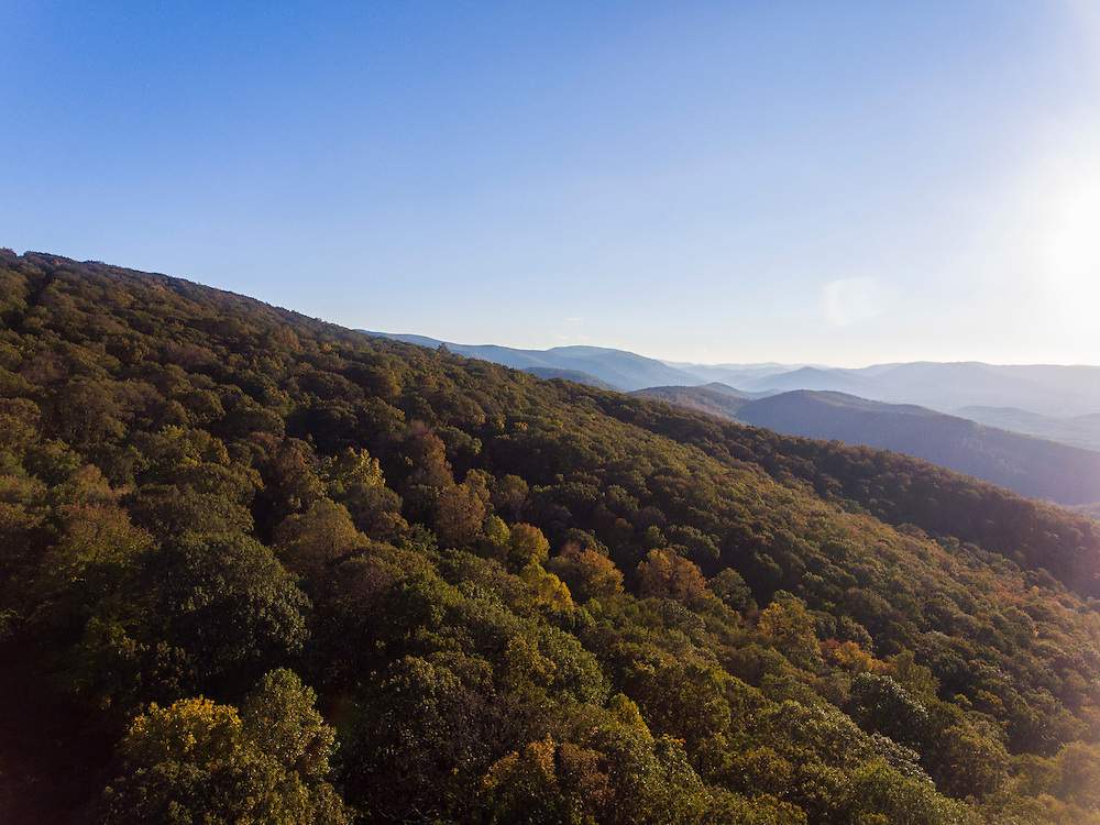The Blue Ridge Mountains in Nelson County, Va. Photo/Andrew Shurtleff