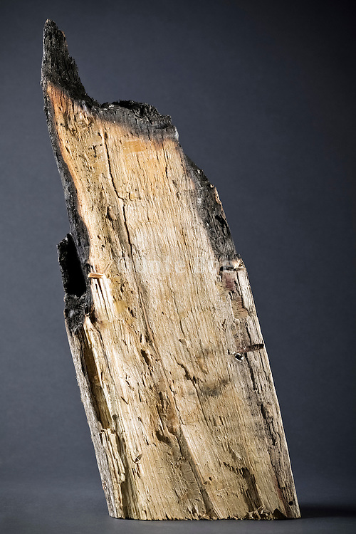 partly burned piece of wood