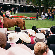 Spectators view horses in the parade ring during The Royal Meeting Race meeting, Royal Ascot. England, UK. June 16-20th, 2009. Photo Tim Clayton