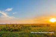 63893-03803 Sunrise and prairie Prairie Ridge State Natural Area Marion Co. IL