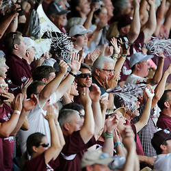Jun 24, 2013; Omaha, NE, USA; Mississippi State Bulldogs fans cheer before game 1 of the College World Series finals against the UCLA Bruins at TD Ameritrade Park. Mandatory Credit: Derick E. Hingle-USA TODAY Sports
