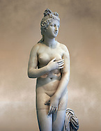 2nd century AD Roman marble sculpture of Aphrodite (Venus), 'Dresden Capitoline Type, copied from a Hellanistic Greek original,  inv 6238, Museum of Archaeology, Italy ..<br /> <br /> If you prefer to buy from our ALAMY STOCK LIBRARY page at https://www.alamy.com/portfolio/paul-williams-funkystock/greco-roman-sculptures.html . Type -    Naples    - into LOWER SEARCH WITHIN GALLERY box - Refine search by adding a subject, place, background colour, museum etc.<br /> <br /> Visit our ROMAN WORLD PHOTO COLLECTIONS for more photos to download or buy as wall art prints https://funkystock.photoshelter.com/gallery-collection/The-Romans-Art-Artefacts-Antiquities-Historic-Sites-Pictures-Images/C0000r2uLJJo9_s0