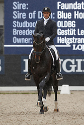 Helgstrand Andreas, DEN, Ferrari Old<br /> Longines FEI/WBFSH World Breeding Dressage Championships for Young Horses - Ermelo 2017<br /> © Hippo Foto - Dirk Caremans<br /> 03/08/2017
