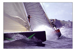 .New Zealand, a country that absorbs their sportng achievements into legend. The America's Cup, the oldest sporting trophy,  won and retained by an NZ based syndicate, with considerable state aid and of course the support of the people, in their droves...Marc Turner / PFM