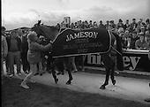 1987 - Jameson Irish Grand National   (R54).