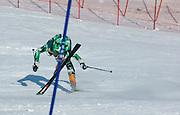 Mens Slalom,2007 U.S. Alpine Championships at Alyeska, Resort, Alaska.