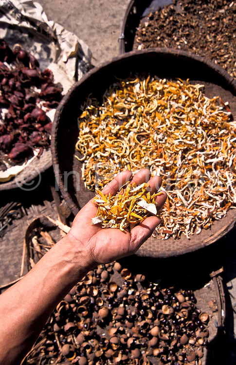 Drying fruit peel, leaves, and other remedies as part of the vast array of Chinese medicine potions, Xiao Meng Yang town, Yunnan province.