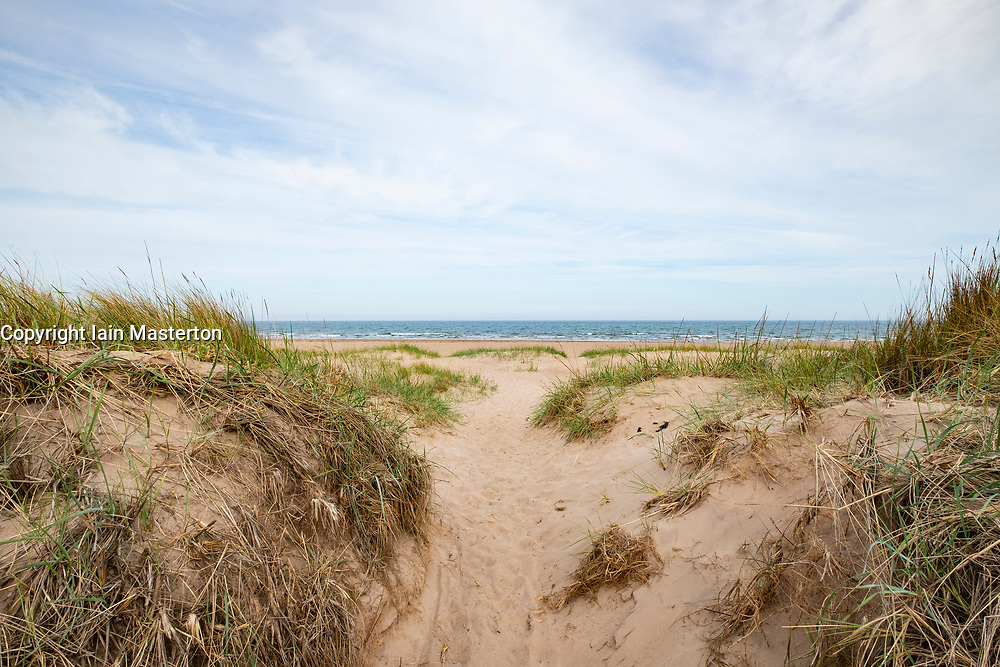 View of beach and sand dunes at Tentsmuir National Nature Reserve on the North Sea coast in Fife, Scotland, United Kingdom