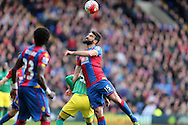 Mile Jedinak, the Captain Palace captain in action. Barclays Premier League match, Crystal Palace v Norwich city at Selhurst Park in London on Saturday 9th April 2016. pic by John Patrick Fletcher, Andrew Orchard sports photography.