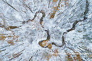 63877-00807 Trees with a dusting of snow aerial view Marion Co. IL