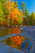 Maple Trees reflected in pool along the Rosseau River at Lower Rosseau Falls in autumn, Rosseau, Ontario, Canada
