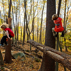 Two nine year old boys play on a downed tree in the forest at Elmwood Farm in Hopkinton, Massachusetts.