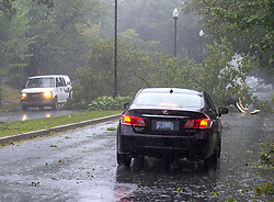 A fallen tree blocks a road in Halifax as hurricane Dorian approaches on Saturday, September 7, 2019, Canada. Photo by Andrew Vaughan/CP/ABACAPRESS.COM