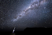 The awe-inspiring Milky Way bears semblance to a celestial flipper, reaching out to a solitary penguin standing on a rocky outcrop in the Curio Bay Fossil Forest.  With a declining population of less than 5000, the endangered Yellow-eyed Penguin is one of the world's rarest penguins, and found only in New Zealand.<br /> <br /> Protecting our night sky from light pollution is not simply for the sake of humans, but also for our wildlife.  Although research of penguins' orientation at night is still in its infancy, scientists believe that birds rely not only magnetism but also the stars and celestial rotation.