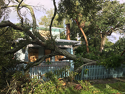 September 11, 2017 - St. Petersburg, Florida, U.S. - Tree down but misses 1920's home at 738 7th St N. in Historic Uptown neighborhood of St. Petersburg Monday morning. (Credit Image: © Dirk Shadd/Tampa Bay Times via ZUMA Wire)