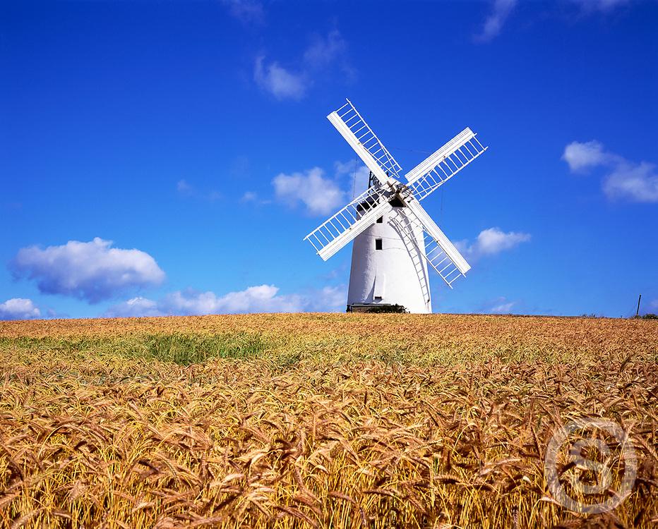 Photographer: Chris Hill, Millisle Windmill, County Down